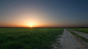 ws_sun_horizon_grass__road_1366x768